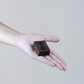 100%cacao_14